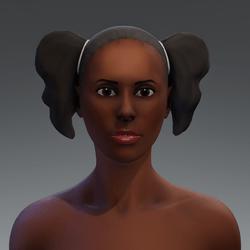 Afro Hair Puff 6a