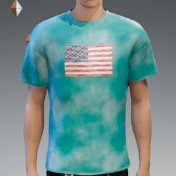 Male - Blue US Flag T-Shirt