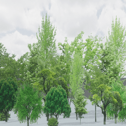 TREE BUNCH BACKDROP ENVIRONMENT FBX