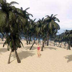 Bundle of 11 Palm Trees