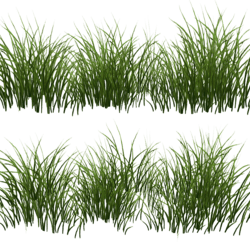 Grass - 3 clumps v2