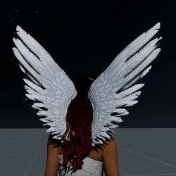 Wings White Female
