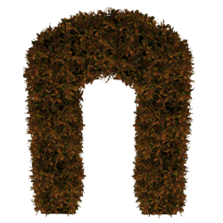 Hedge Arch_Copper