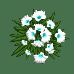 Petunia 15