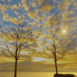 sunrise over denmark