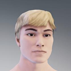 Short Male Hair2