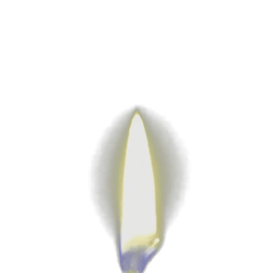 Animated Candle Flame [3]