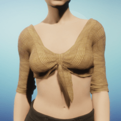 Woven Tan Tied Crop Top