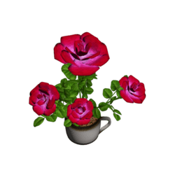 Roses in Coffee Cup - Pink