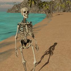 Female Skeleton Avatar