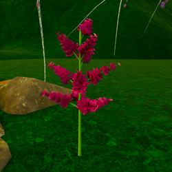 Beautiful Fantasy Flower 02