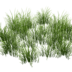 Grass Patch Round v2