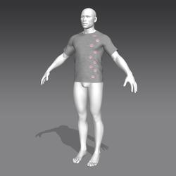 Alinity T-Shirt - Gray - Male