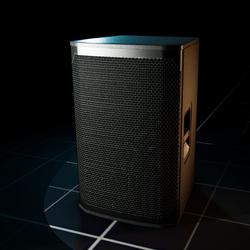 Polygon ~ RX5 PA Speaker