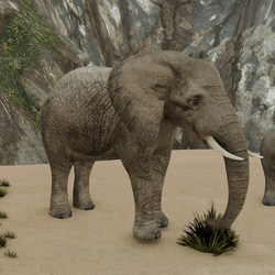 African Elephant V3 (animated)
