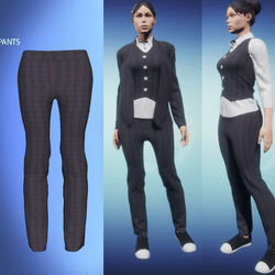 Womans Suit Pants