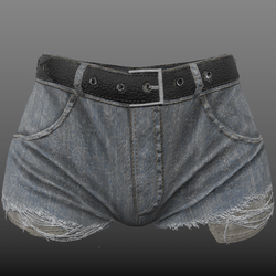 Alina - Ripped Denim Shorts with pockets showing