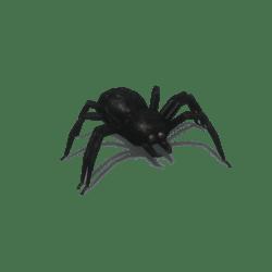 Black creepy spider [Animated]