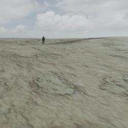 Low Desert Dunes