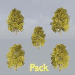 Maple Tree Pack Autumn
