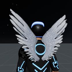 Wings White Male