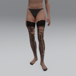 Thigh High Stockings Torn (Clothing) - Female