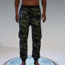 Camouflage2 Sweatpants for Men