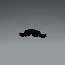 Mustache NA