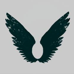 Wings Glacier Male