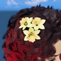Daffodils head bouquet [ears]