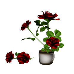 Roses in Coffee Cup - Bloody Red