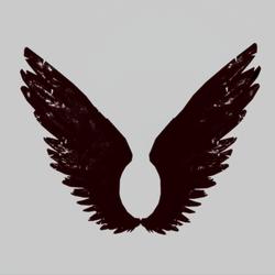 Wings Fire Male