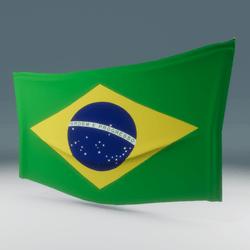 Brazil Flag Wall Display