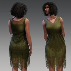 Laced Swing Dress