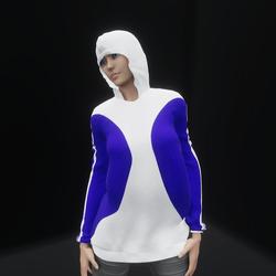 Hoodie Dress Blue (TM)