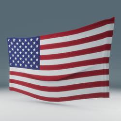 USA Flag Wall Display