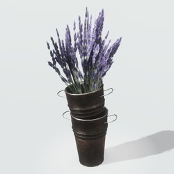 Copper Pots with Lavender