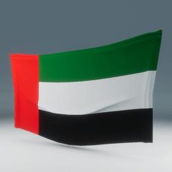 UAE Flag Wall Display