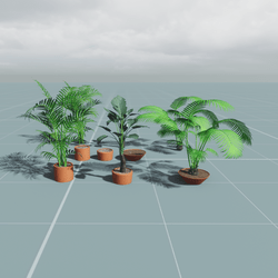 TKA Set plants