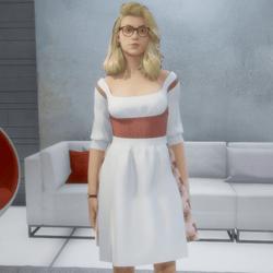 Dirndl / Bavarian Dress