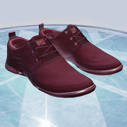 Shoes v6 (male)