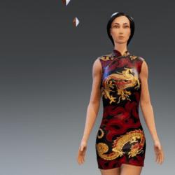 Chinese Satin Dress #1
