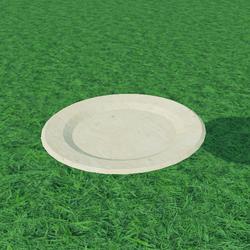 Wood Plate 1