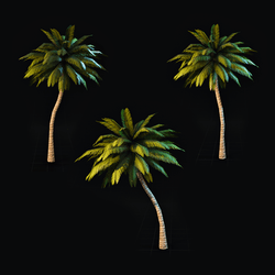 Polygon ~ Palm Tree Collection