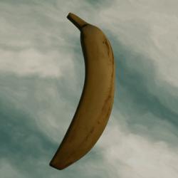 Galileo's Real Banana