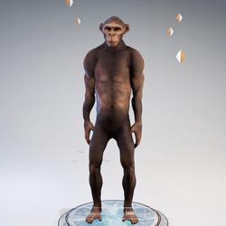 Monkey v2.0