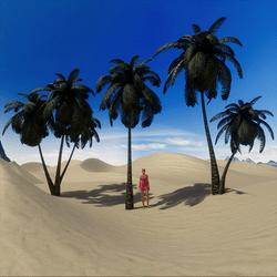 Bundle of 6 Palm Trees