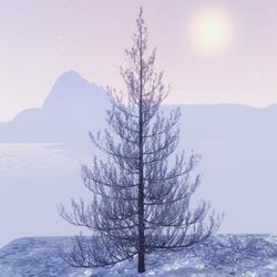 X-mas silver tree