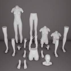 AV 2.0 Mannequin Body Parts Store Displays