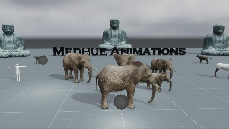 Medhue Testing Exp